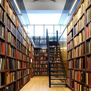 Библиотеки Звенигово
