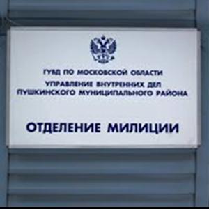 Отделения полиции Звенигово