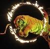 Цирки в Звенигово